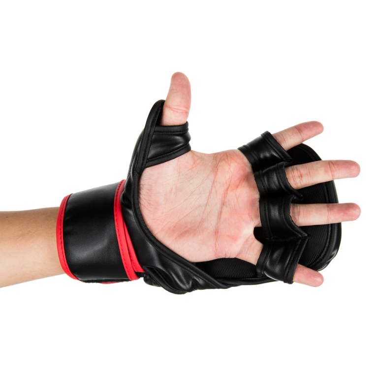 sparring gloves 10
